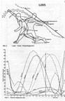 Die Biomechanische Bewegungsanalyse mit Hilfe des Computers
