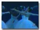 tn-adi-vid-01019